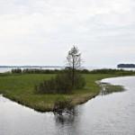 Heinäkuu: Niinivesi Kuva: Juha Pirppu, Vesanto
