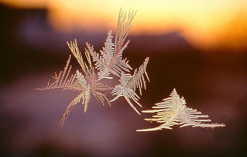 Huhtikuu: Luonnon taidetta Kuva: Tauno Salmi, Syvänniemi