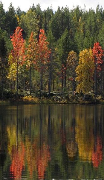 Syyskuu: Syksyn värej, Hannele Tyynelä-Vilhunen, Karttula