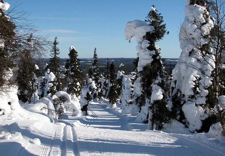 Helmikuu: Latua, Hannele Tyynelä-Vilhunen,Karttula