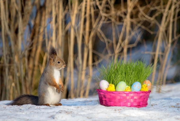 Huhtikuu: Oravan pääsiäinen, Anne Jaatinen, Karttula